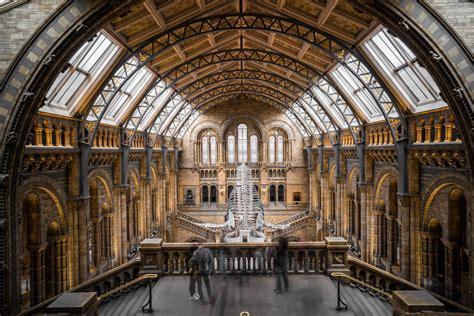 London museum guide: From British Museum to the V&A, the