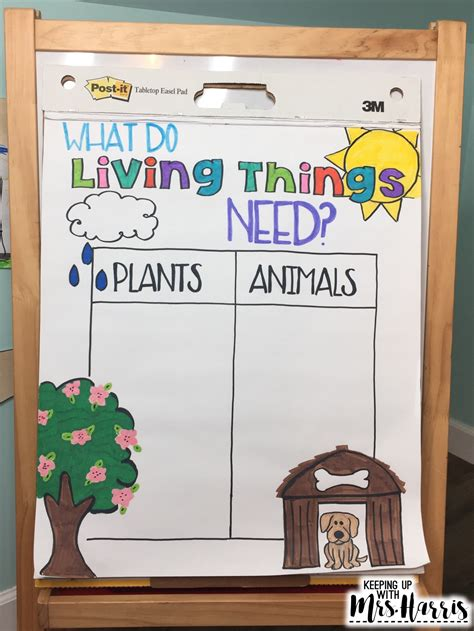 Living Things Anchor Chart - Keeping Up with Mrs
