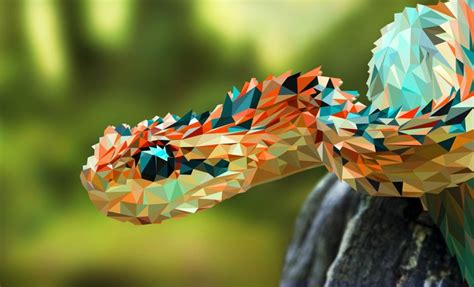 12 Beautiful Snakes You Will Love To Have As Pets