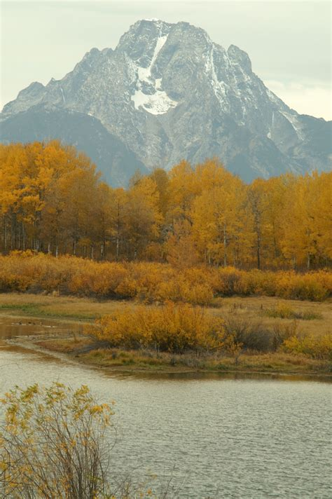 The Best Places To See the Spectacular Wyoming Fall Foliage